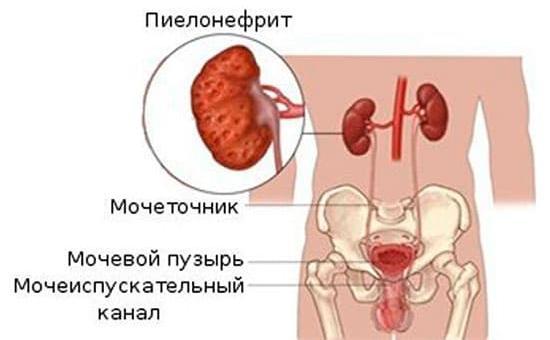 anfisi-pochemu-sperma-bestsvetnaya-kitaykami-horoshem